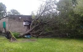 18/02/2020: El gobierno provincial asiste a familias afectadas por la lluvia en el norte entrerriano