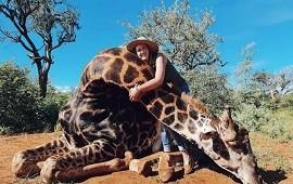 26/02/2021: Cazadora mata a una jirafa y posa con el corazón en la mano