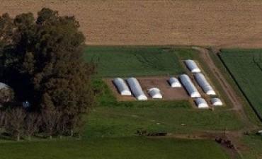 agro Para la Federación Agraria, el paro dispuesto por las otras tres entidades del campo