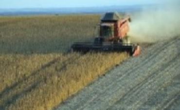 10/04/2017: Por exportación de granos se liquidaron U$S 5254 millones en lo que va del año
