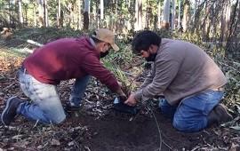 22/04/2021: CODESAL comenzó con la restauración ecológica del ambiente nativo