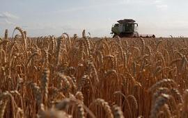 24/04/2021: Alimentos: ¿Cómo obtener datos confiables a lo largo de toda la cadena de producción?