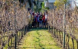 26/05/2018: Alrededor de 1.000 personas se acercaron a los viñedos entrerrianos este 25 de Mayo