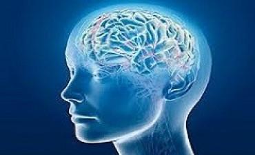 Capacitan en Salud Mental a profesionales de Catamarca