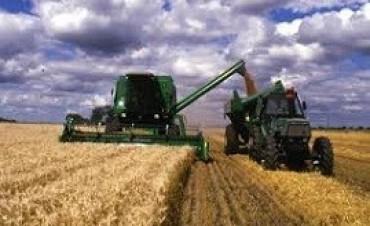 Los agroexportadores ingresaron US$ 10.900 millones en lo que va de 2017