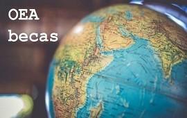 19/06/2019: La Organización de Estados Americanos ofrece becas para estudios de posgrado en Brasil y España