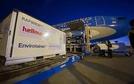 22/06/2021: Vacunas Sinopharm: arribó el segundo avión con 768 mil dosis
