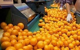 22/06/2021: El gobierno se reunió con exportadores de citrus y explicó las gestiones para ampliar mercados