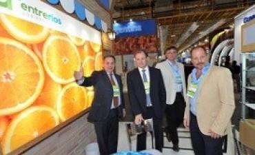 06/07/2017: Un cargamento de 22 toneladas fue enviado desde Concordia Satisfacción del gobierno entrerriano por la primera exportación de naranjas entrerrianas a Brasil