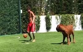 30/07/2018: Los jueguitos de Messi con su perro Hulk que sorprenden hasta a sus hijos