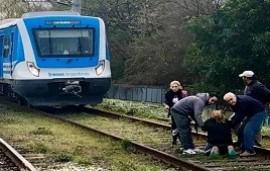 27/07/2019: Quilmes: una mujer se arrojó a las vías y el conductor evitó una tragedia