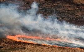 29/07/2021: Por la bajante del Paraná y la sequía, más de 400 focos de incendios en el Delta en apenas 14 días