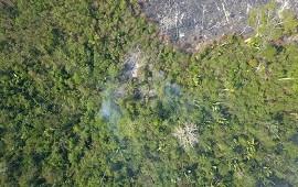 28/08/2019: Grileiros e invasores, las mafias clave en la propagación del fuego en el Amazonas