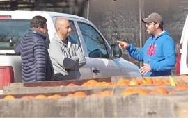 """02/08/2021: Citricultores de Concordia afirman que """"por la pandemia la gente come frutas y eso nos beneficia"""""""