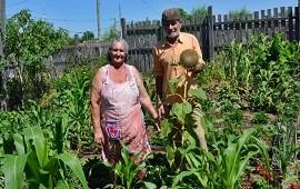 17/08/2021: Por el Prohuerta estiman que una familia produce tres kilos diarios de verdura y ahorra más de 4 mil pesos al mes