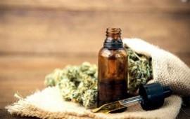 28/09/2020: Ciudad de Buenos Aires: comenzó el debate por el cannabis medicinal