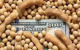 29/09/2020: Quedan sin vender USD 9.000 millones de la última cosecha de soja, trigo y maíz