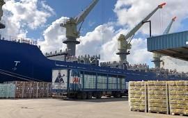 22/09/2021: Cantidad, calidad y tipo de mercados: nuevo embarque representa un hito para la exportación de cítricos