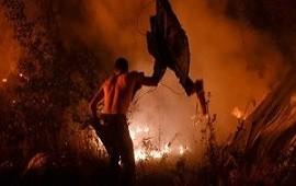 16/10/2017: Al menos 36 muertos por los incendios forestales en Portugal y otros cuatro en Galicia
