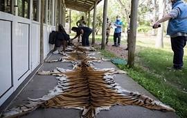 07/10/2020: Constataron faltantes de animales inventariados en zoológico de Concordia