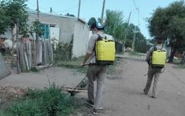 19/10/2020: Se concreta un intenso trabajo de prevención y control de mosquitos en Concordia