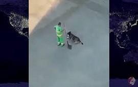 29/10/2020: La tierna actitud de un barrendero con un perro es furor en las redes sociales