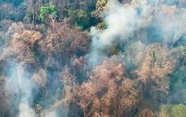 30/10/2020: Incendios forestales: Jujuy, La Rioja y Córdoba mantienen focos activos