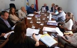 Se definieron las autoridades de la comisión ad hoc para la modificación de la Ley 9.892