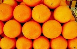 10/12/2020: Afirman que más del 30% del precio de la naranja corresponde a impuestos